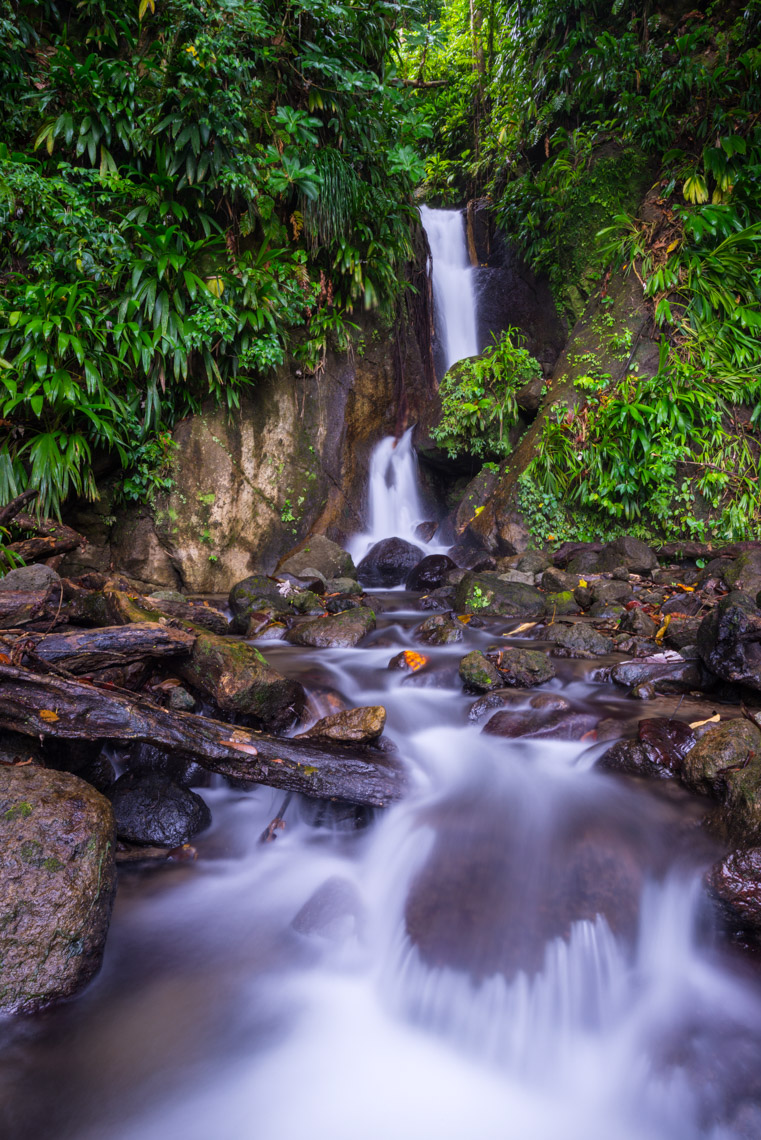 Waterfall in Trafalgar - Waitukubuli National Trail, Dominica