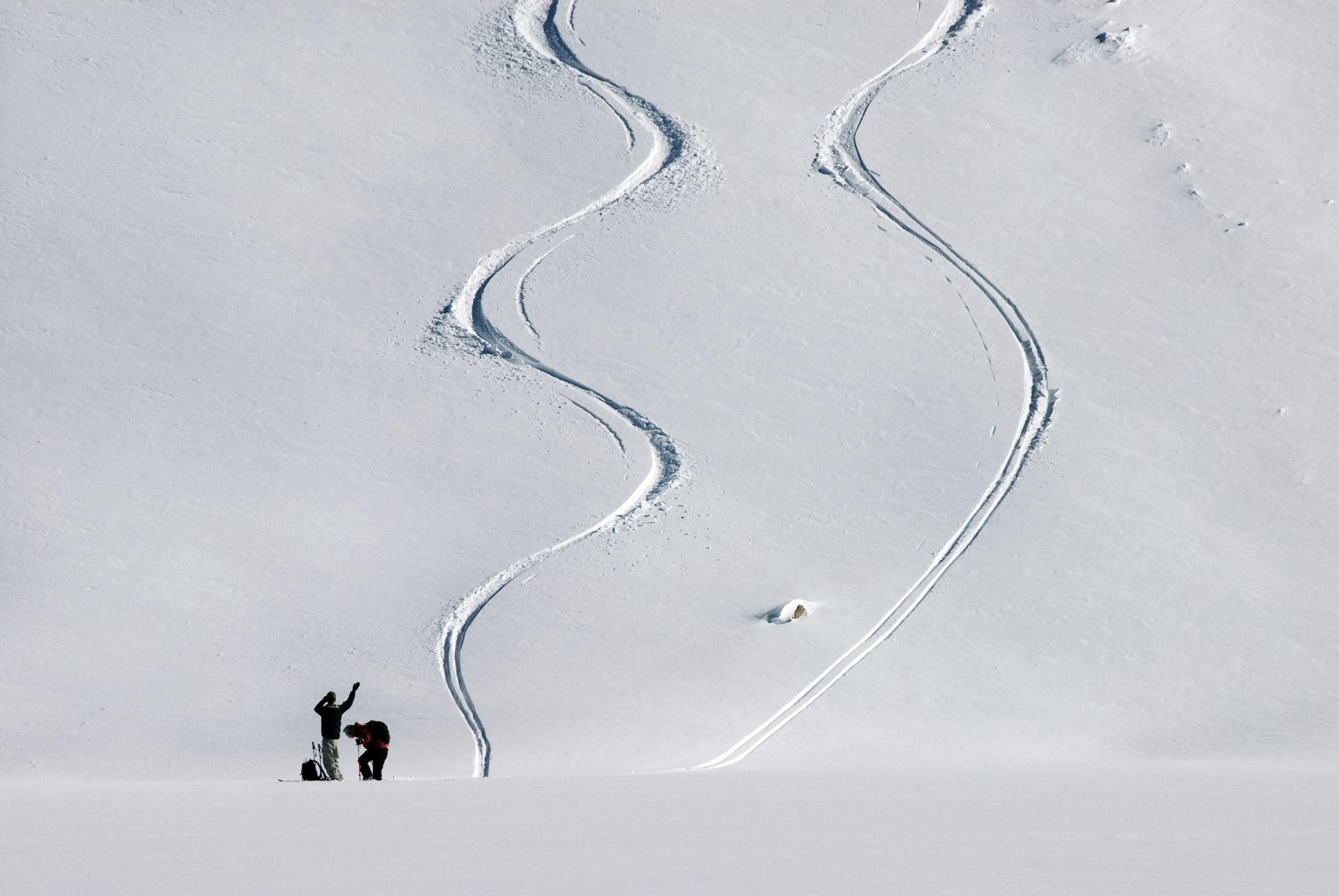 Ski Tracks In Powder - Emigrant Basin, Kirkwood, California