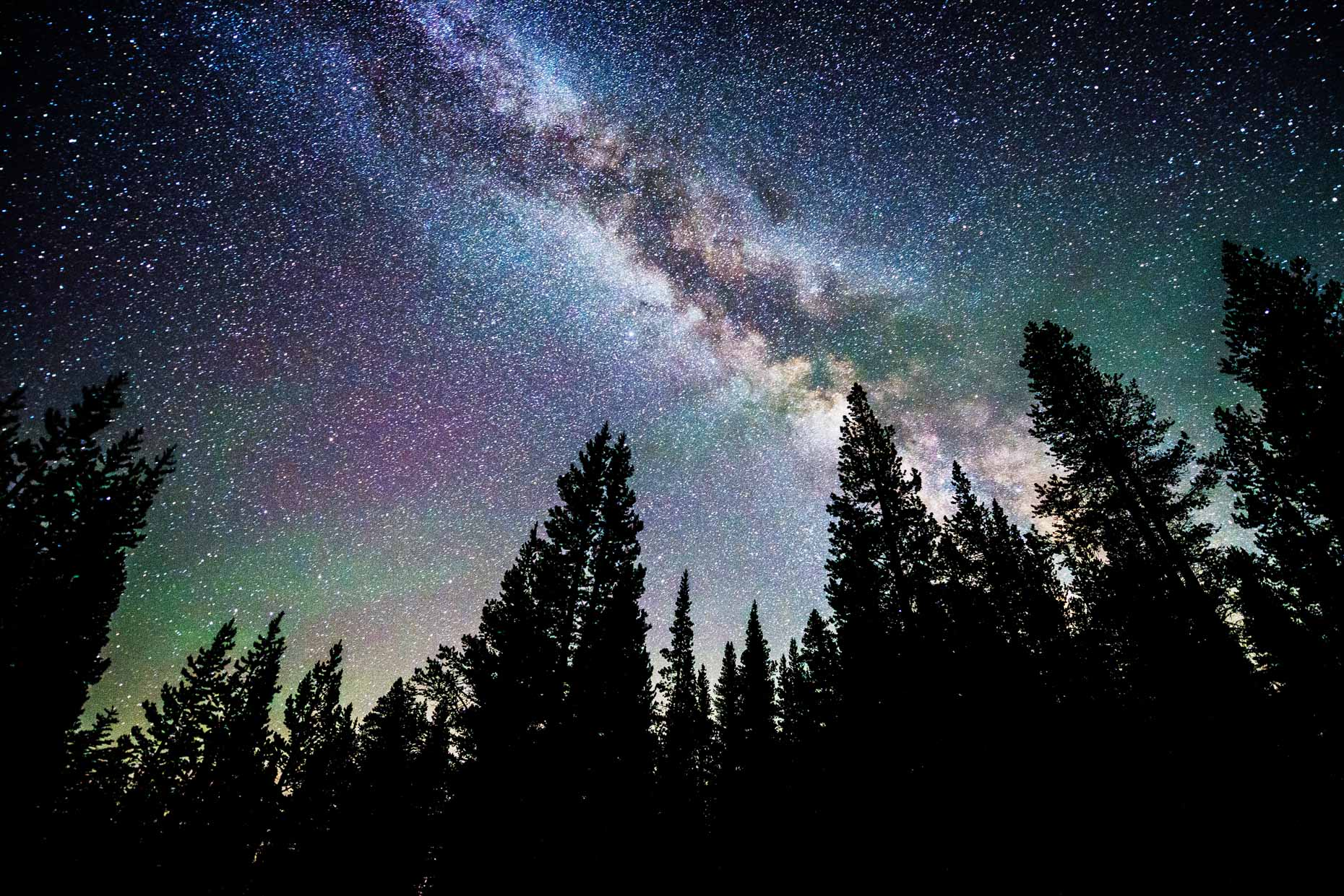 Night Sky - Milky Way And Stars Over Trees - Lake Tahoe, Nevada